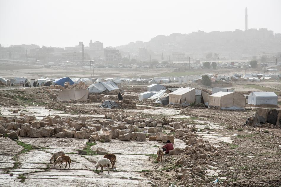Vista general del campo de Dahadh. Los equipos de MSF han distribuido kits de emergencia a personas desplazadas en el campo en múltiples ocasiones, y organizaron clínicas móviles para brindar atención médica, hasta que los propietarios de las tierras dond