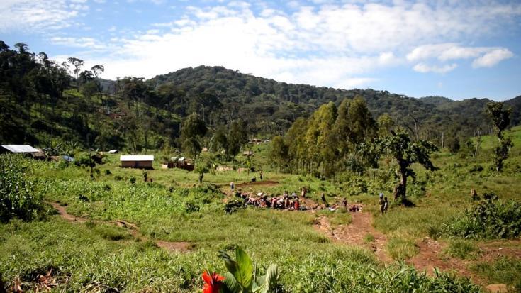 El parque nacional Kahuzi Biega, patrimonio mundial de la UNESCO, es famoso por sus reservas de gorilas. Este estatus conlleva el costo de expulsar a las comunidades pigmeas nómadas que habían estado viviendo en esta parte del territorio de Kalehe durante