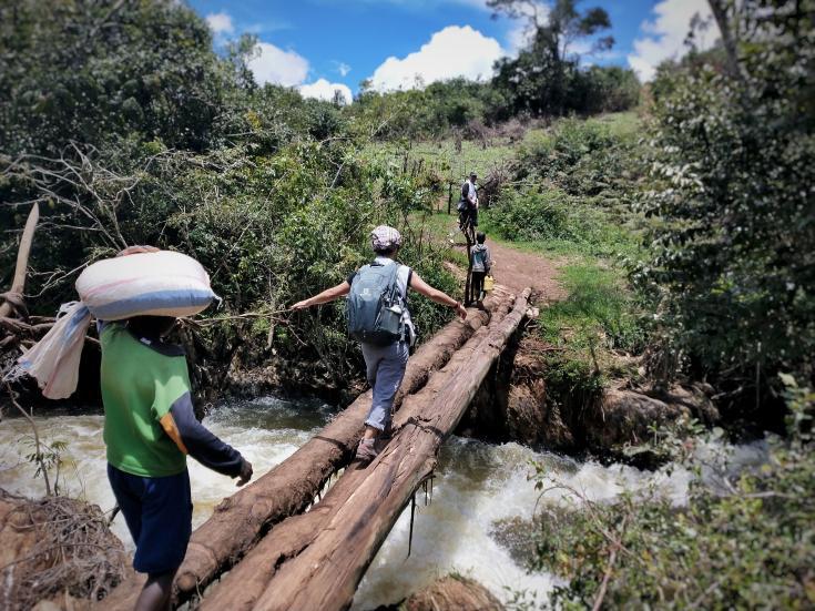 Puente hecho con troncos sobre un río caudaloso