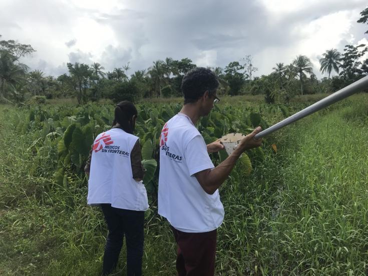 El equipo de Control de Vectores de MSF visita zonas de criaderos de mosquitos transmisores de malaria en Agua Clarita y Caño Ajíes, en el estado Sucre, para identificar los indicadores necesarios y desarrollar estrategias de control y prevención.