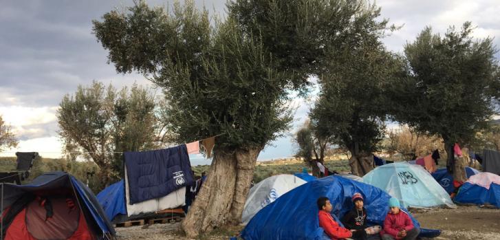 A medida que las temperaturas bajan cada día, las personas no tienen más remedio que vivir en tiendas de verano en el campamento de Moria o en el olivar cercano. ©MSF
