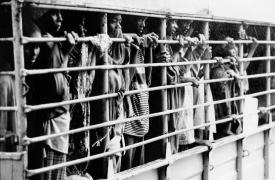 Genocidio de Ruanda 25 años después