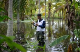 El biólogo Melfran Herrera, quien trabaja en nuestros equipos en el estado Sucre, busca larvas de mosquitos Anopheles para conseguir información que permita diseñar estrategias efectivas para la prevención de la malaria. Venezuela, agosto de 2021