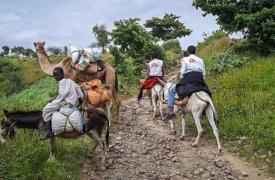 El equipo de Médicos Sin Fronteras se traslada en burros desde la ciudad de Rokero hasta Umo, en un viaje de cuatro horas en Sudán.